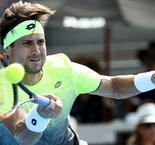 Ferrer to face Del Potro in Auckland semi-finals