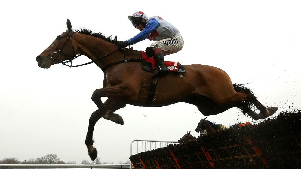 Horse Racing news, Horse Racing Live scores and fixtures