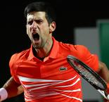 Djokovic survives match points to down dogged Del Potro