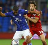 Cardiff City 1-1 Fulham: Cottagers hold on despite Arter red against former club
