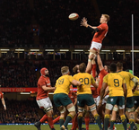 Time together will make Wales stronger...just look at Australia - Gatland