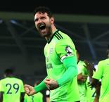 Brighton and Hove Albion 0 Cardiff City 2: Bluebirds boost survival hopes