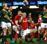 Wales survives fightback to overcome Springboks