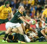 Coetzee wants repeat of 'dog fight' against All Blacks