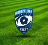 Montpellier: Sans Steyn, ni Martin, out 6 mois face à Paris