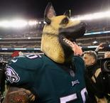 Mask-wearing Eagles revel in underdog status