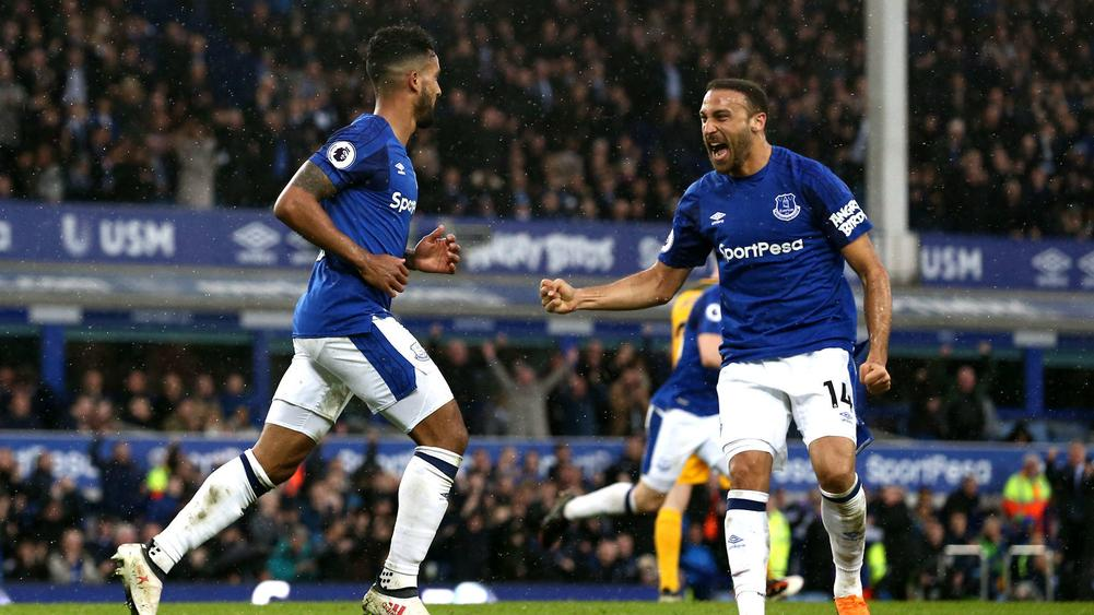 Everton boss Sam Allardyce provides update on Theo Walcott injury