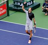 Indian Wells : Del Potro a bataillé face à Ferrer