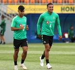 Why Cahill, Arzani must be given a shot at Denmark